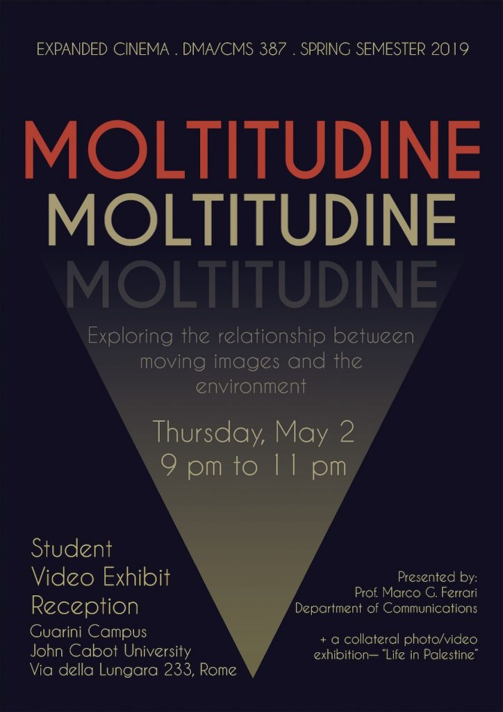 Moltitudine Student Video exhibit