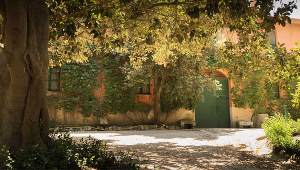 JCU Professor Cornelia Lauf Creates Artist Residency in Sicily