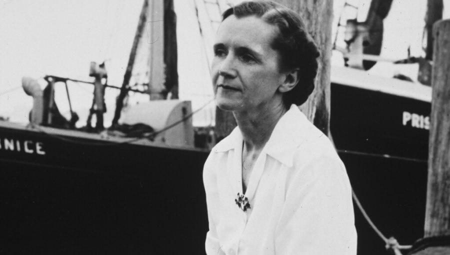Italy Reads: Professor Antonio Lopez on Rachel Carson's Silent Spring